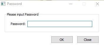Запрос на ввод пароля перед запуском программы.